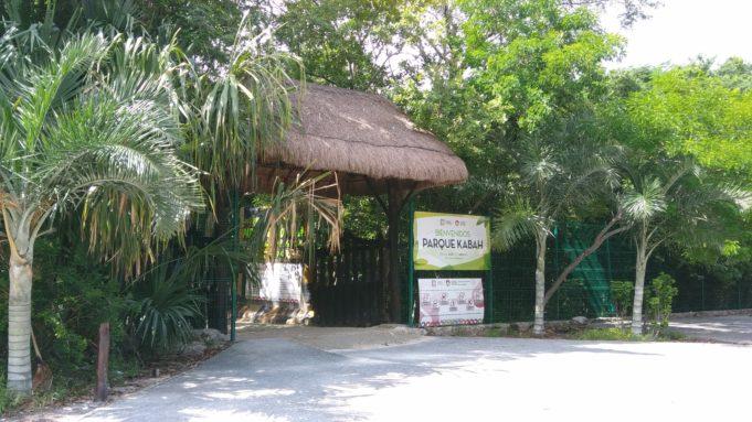 Cualquier día reconéctate contigo y con la naturaleza en el Parque Ecológico Kabah