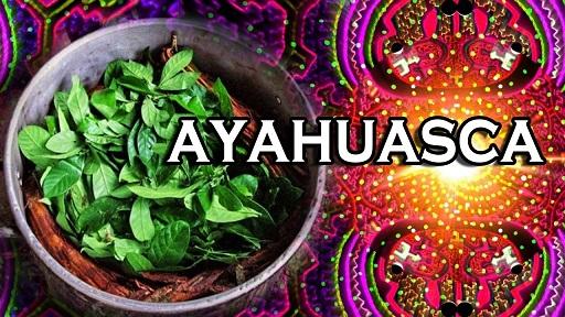 Ceremonia de la ayahuasca es una experiencia sanadora